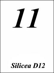 Schüssler Salze Nr 11 Silicea